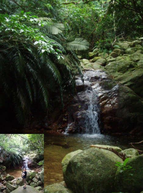 石垣島・川平の宿泊 Hills Yamabare 荒川の滝