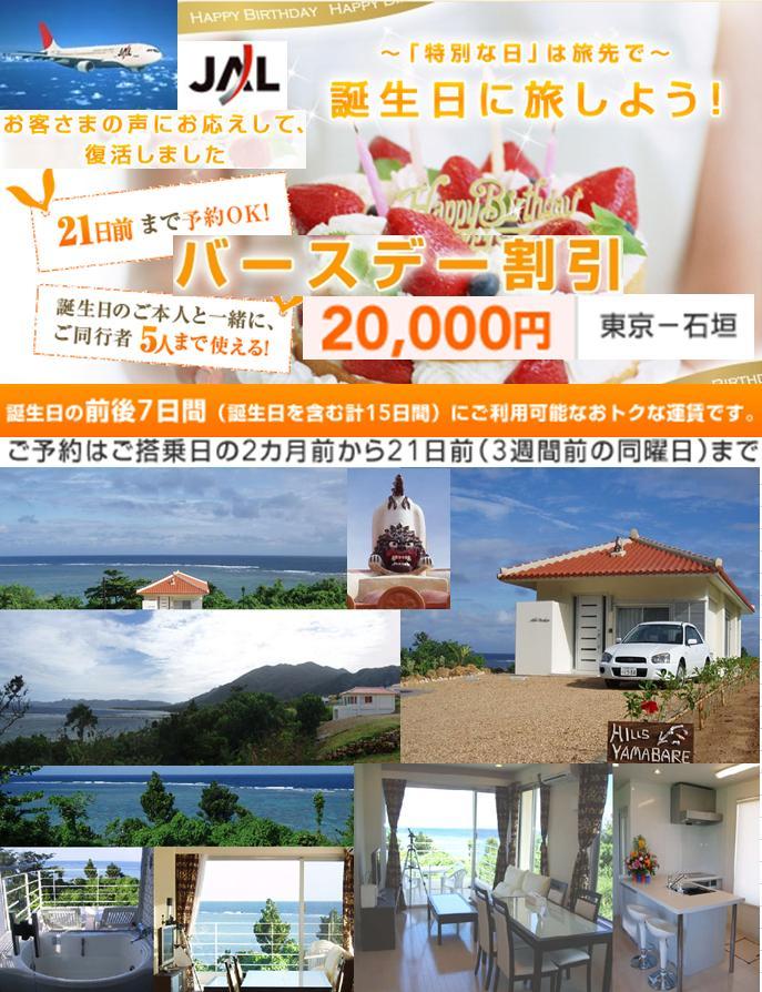 JAL バースデー割引 石垣島 貸別荘 レンタルハウス 格安 海が見える 宿泊