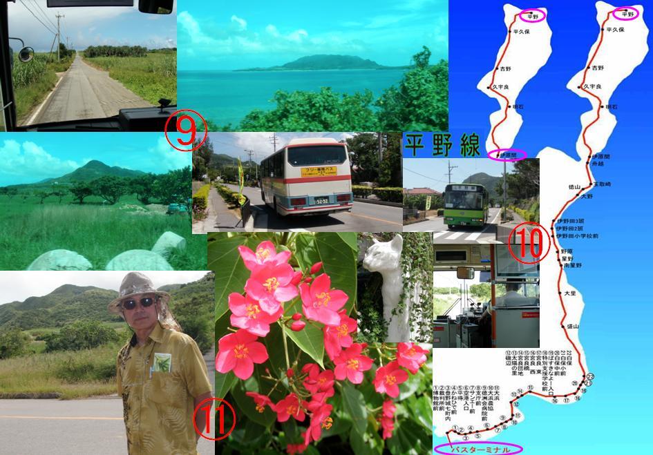 ヒルズヤマバレ 路線バス 石垣島 一周 泊まる レンタルハウス