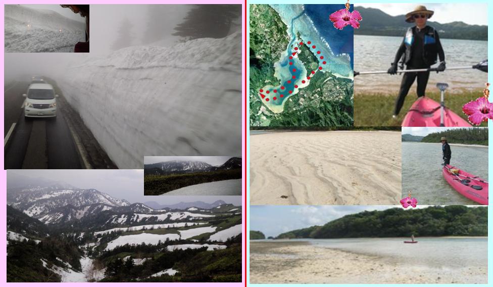 志賀草津高原ルート 雪の回廊 川平湾 小島 白砂の海廊 カヤック