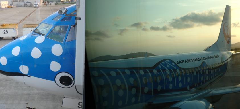 hillsyamabare 石垣島 ジンベイジェット
