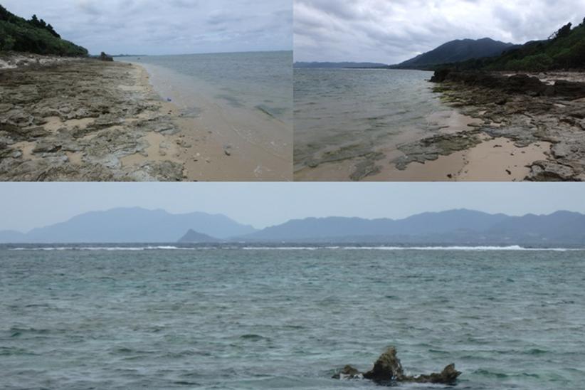 山原 海岸 サンゴ礁 平久保崎
