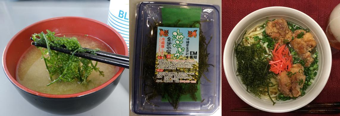 海ブドウ 味噌汁 サラダ 八重山そば お土産