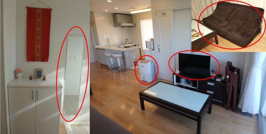 ひるずやまばれ 玄関 姿見 高性能 除湿器 TV 交換 ソファーカバー
