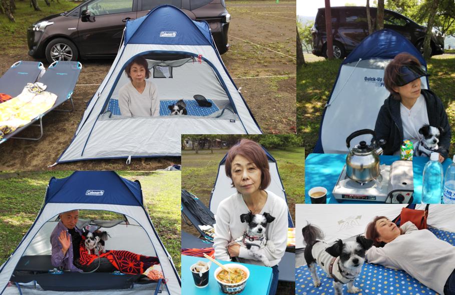 岬キャンプ場 デーキャンプ テント テーブル キャンプベッド カップラーメン ランチ コーヒー