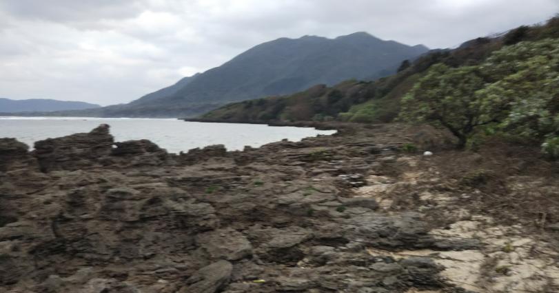 hillsyamabare 目の前の海 歩いて下りれる 海岸 ボランティア 清掃